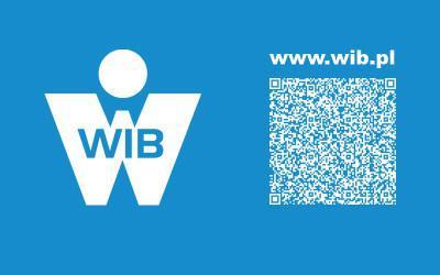 New WIB's website