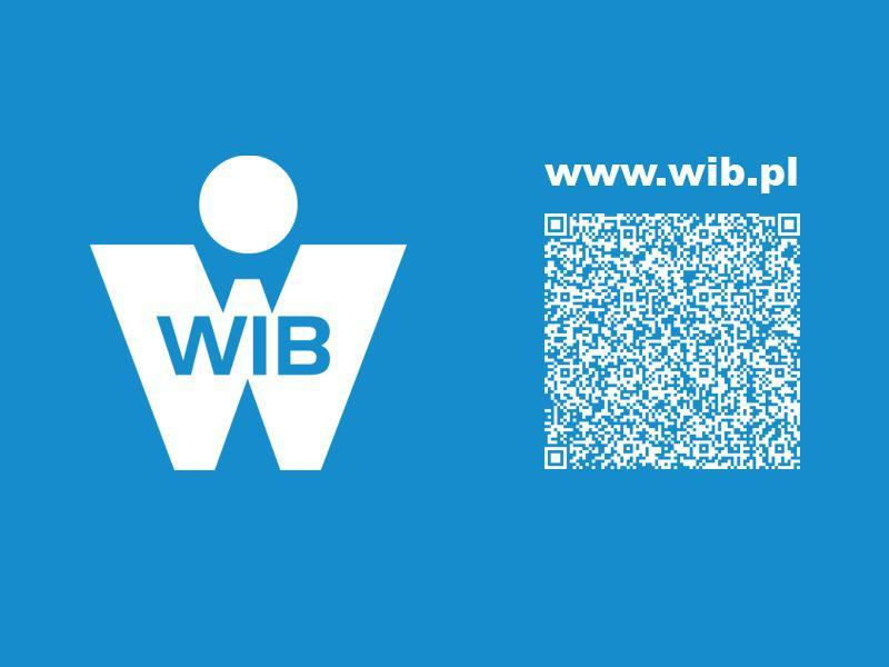 Nowa strona internetowa firmy WIB
